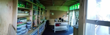 "From Mark, in L.A.: ""I've been meaning to send you pix of our shed...born of your plans. we expanded it a bit to fill the space...and built in some much needed storage. Now my wife has moved her office out of the dining room and looks forward to her mornings sequestered in her shed, working away."""